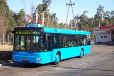 MAN Bus von Tarnowo (Polen) nach Salzgitter